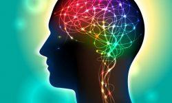 Brain Change image