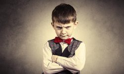 The Defiant Child Challenging Behaviors image